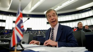 Le député européen birtannique Nigel Farage, chef du Brexit Party, le 27 mars 2019 dans l'hémicycle du Parlement européen, à Strasbourg. (VINCENT KESSLER / REUTERS)