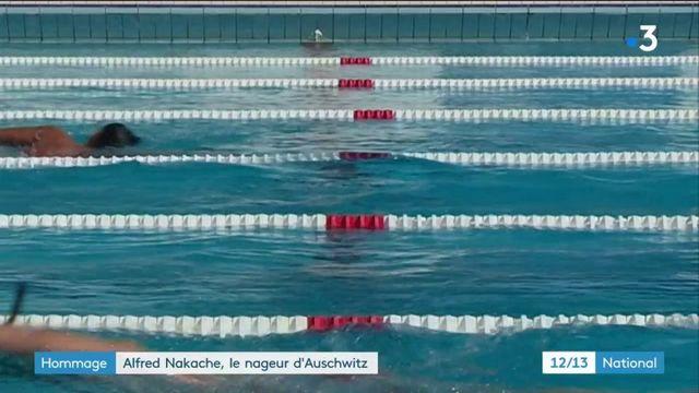 Natation : le nageur rescapé d'Auschwitz, Alfred Nakache, entre au panthéon de sa discipline