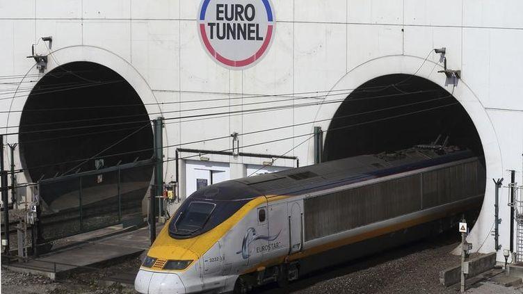 Un train Eurostar sort du tunnel à Coquelles, près de Calais (Pas-de-Calais), le 5 mai 2014. (PASCAL ROSSIGNOL / REUTERS)