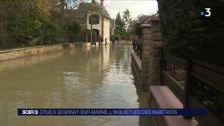 La Marne déborde à Gournay-sur-Marne. (FRANCE 3)
