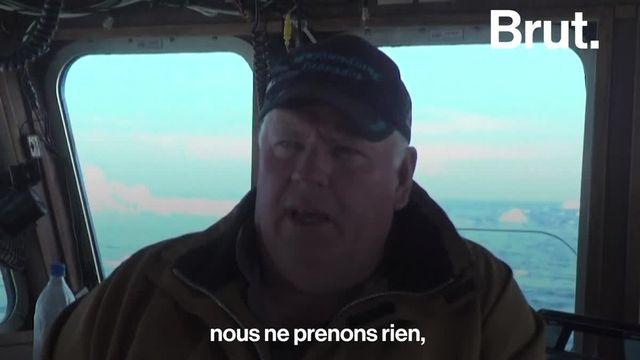 """C'est un métier de plus en plus populaire au Canada : les """"chasseurs d'iceberg"""". Voilà comment ces chercheurs d'or blanc gagnent leur vie."""