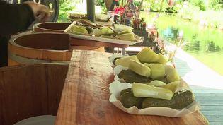 Le cornichon est cultivé en abondance dans l'est de l'Allemagne. (CAPTURE ECRAN FRANCE 2)