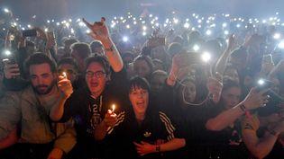 Le public desTrans Musicales de Rennes en 2017. (LOIC VENANCE / AFP)