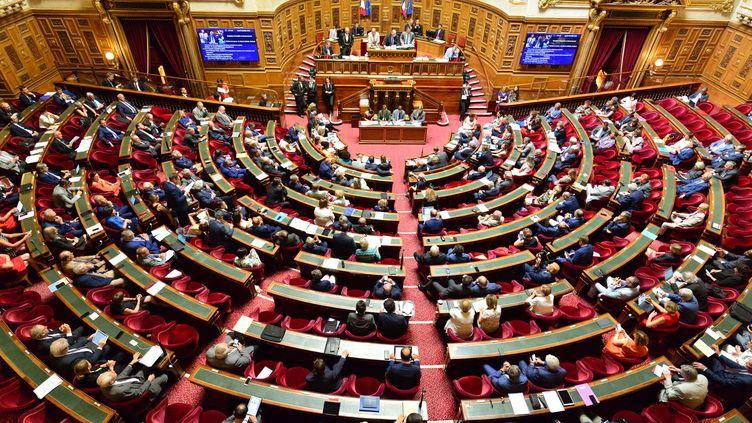 Une séance hebdomadaire de questions au gouvernement, au Sénat à Paris, le 23 juillet 2019. (DANIEL PIER / NURPHOTO / AFP)