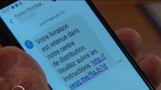 Arnaques : attention aux fraudes par SMS liées aux colis (France 3)