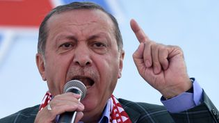 Recep Tayyip Erdogan, lors d'un discours à Istanbul (Turquie), le 15 avril 2017. (BULENT KILIC / AFP)