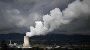 Centrale nucléaire de Goesgen dans le nord de la Suisse en novembre 2016. (FABRICE COFFRINI / AFP)