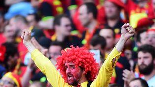 Un supporter belge, le 26 juin 2016, à Toulouse. (EMMANUEL DUNAND / AFP)