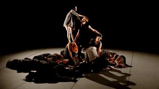 """""""Chute Libre"""" de Sharon Friedman présenté en ouvertue du festival Danse Emoi de Limoges  (France 3 / Culturebox)"""
