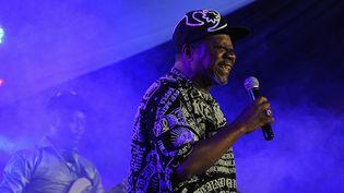 Le chanteur congolais Papa Wemba  (TONY KARUMBA / AFP)