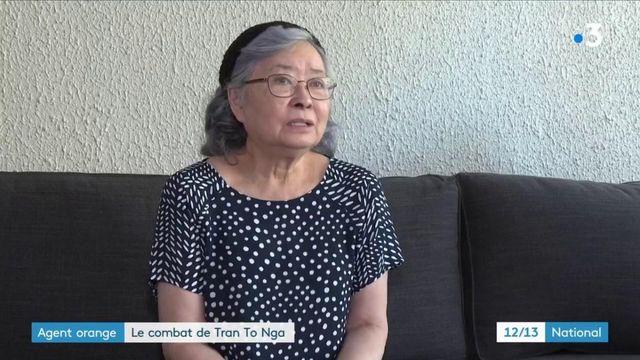 Guerre du Vietnam : la franco-vietnamienne Tran To Nga défie les multinationales qui ont fabriqué de l'agent orange