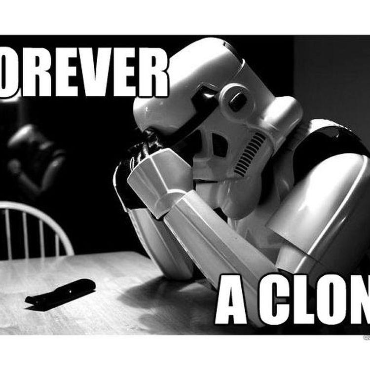 """Un stormtrooper dans un des nombreux détournements de """"Star Wars"""" réalisés par les internautes. (DR)"""