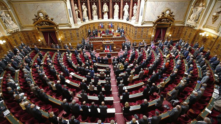 Le Sénat, à Paris, le 7 avril 2015. (CHARLES PLATIAU / AFP)