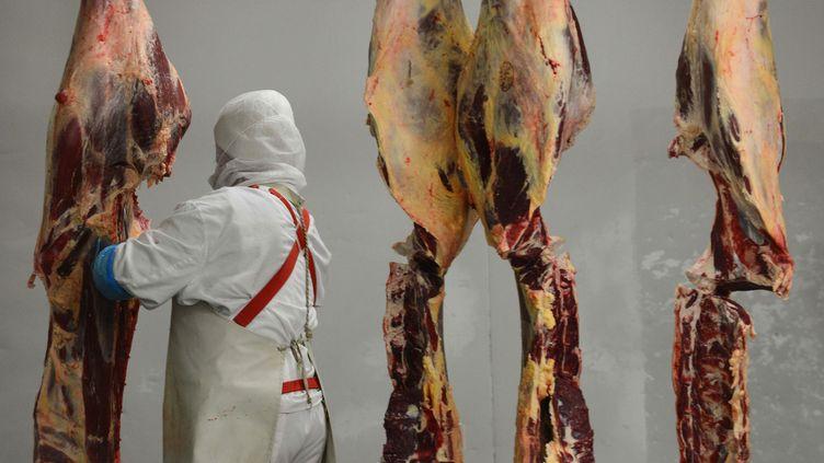 Des carcasses de cheval dans un abattoir en Roumanie. Un réseau de trafiquants de viande de cheval a été démantelé lundi 16 décembre, dans le sud de la France et en Espagne. (DANIEL MIHAILESCU / AFP)