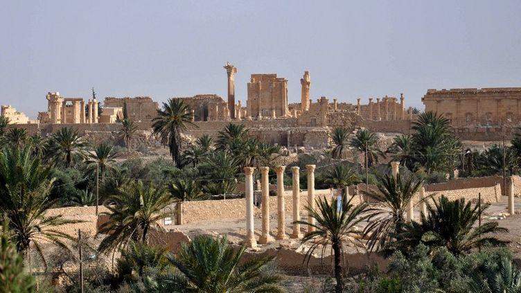 Une vue de Palmyre (Syrie), le 18 mai 2015. (STR / AFP)