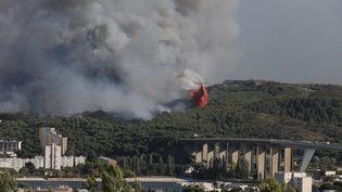 La fuméede l'incendie de Martigues, le 4 août 2020 (SERGE GUEROULT / MAXPPP)