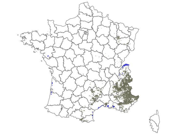 Carte de la présence du loup en France en 2018 réalisée par les services de l'Office national de la chasse et de la faune sauvage. (ONCFS)