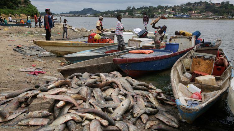 Malgré l'interdiction décrétée, la pêche continue sur le fleuve Ogooué, ce 12 août 2019 à la hauteur de Lambaréné au Gabon. (STEVE JORDAN / AFP)