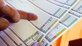 En Charente-Maritime, dix établissements, dont ce collège de Gémonzac, ont opté pour un code couleur à la place des traditionnelles notes sur 20. (PATRICK BERNARD / AFP)