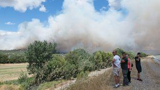 Un incendie qui s'est déclenché à La Bastidonne de Pertuis (Vaucluse) se propage en direction de Mirabeau, le 24 juillet 2017. (MAXPPP)