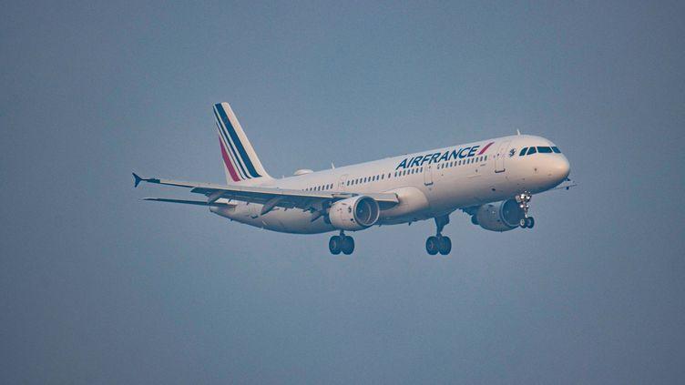 Un avion Air France à son arrivée à l'aéroport d'Amsterdam le 1er avril 2021. (NICOLAS ECONOMOU / NURPHOTO / AFP)