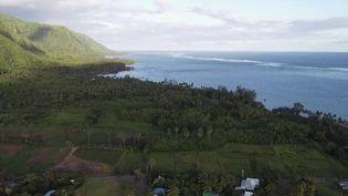 Sur lapresqu'île de Taiarapu, à Tahiti, il n'y a quasiment pas de maisons, ni de routes. Les quelques habitants font tout pour que rien ne change. (FRANCE 2)