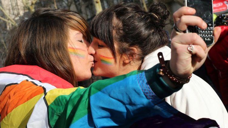 Dans le cortège de la manifestation en faveur du projet de loi pour l'ouverture du mariage aux couples homosexuels, dimanche 27 janvier 2013, à Paris. (THOMAS SAMSON / AFP)
