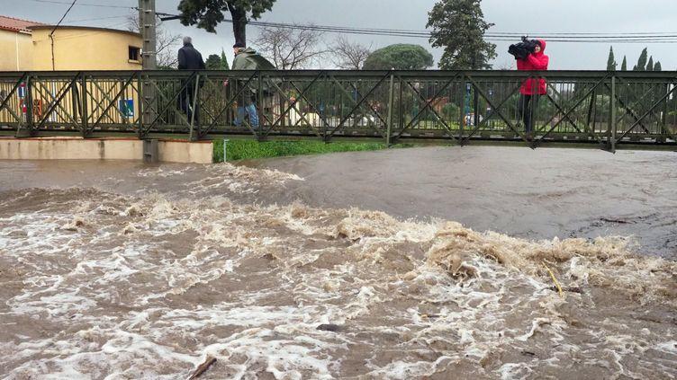 La tempête Gloria donne des allures de torrent à la Massane à Argelès-sur-Mer, le 22 janvier 2020. (RAYMOND ROIG / AFP)