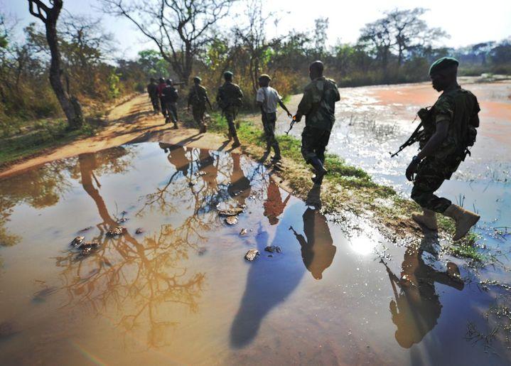 Les patrouilles de rangers ont été renforcées dans le parc de la Garamba. La surveillance aérienne aussi, dans le but d'endiguer les incursions de braconniers. (Photo AFP/Tony Karumba)