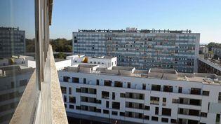 La tour Utrillo, à Montfermeil (Seine-Saint-Denis), devait devenir une résidence d'artistes. Le projet va être repensé  (Bertrand Guay / AFP)