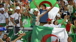Supporters de l'équipe d'Algérie, lors du match Algérie-Guinée de la CAN (MOHAMED EL-SHAHED / AFP)