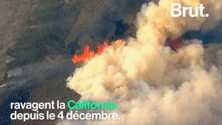Le changement climatique à l'origine des gigantesques incendies en Californie (BRUT)