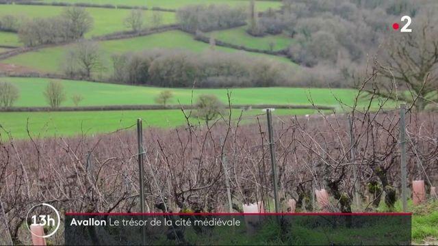 Yonne : voyage au coeur de la cité médiévale d'Avallon