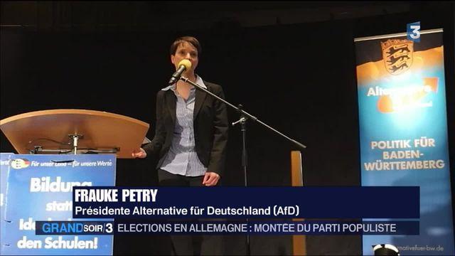 Élections en Allemagne : montée du parti populiste AFD