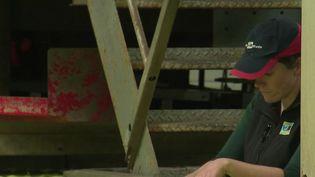 Lise Timmerman a repris l'exploitation agricole familiale dans la Sarthe (CAPTURE ECRAN FRANCE 2)