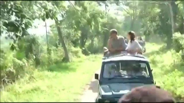 VIDEO. Le safari du couple princier britannique William et Kate dans un parc national en Inde