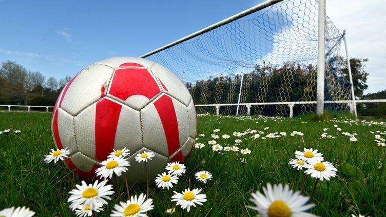 La pratique des sports collectifs comme le foot, le hand, le volley ou encore le basket, est difficilement compatible avec les mesures de distanciation physique .Photo d'illustration. (NICOLAS CREACH / MAXPPP)