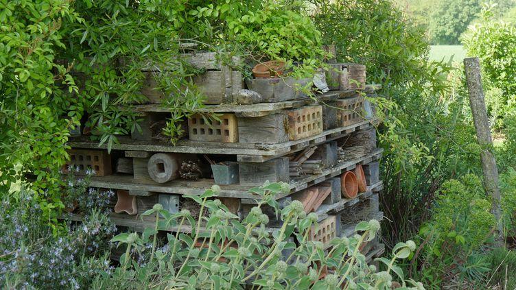 Hôtel à insectes dans le jardin de Marie (Cher). (ISABELLE MORAND / RADIO FRANCE / FRANCE INFO)
