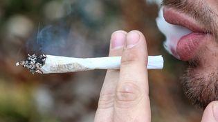 Le cannabis est toujours le produit illicite le plus consommé en France, selon le baromètre Santé publié le 3 avril 2014. (  MAXPPP)
