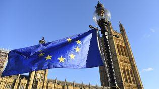 Des opposants au Brexit agitent un drapeau européen devant le parlement britannique, le 6 novembre 2017 à Londres (Royaume-Uni). (ALBERTO PEZZALI / NURPHOTO / AFP)