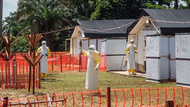 comme ici dans cette zone de quarantaine à Iyonda, près de Mbandaka (nord-ouest de la RDC), sont la seule protection contre le redoutable virus Ebola. Un agent pathogène qui attaque son hôte. Il se transmet entre les humains par contact direct avec le sang et avec des liquides biologiques de personnes infectées, ou par contact indirect avec des environnements contaminés par ces liquides. Les plus grandes précautions sont vivement recommandées. Cela n'a pas empêché ce virus, apparu en 1976, de s'étendre sur une partie du continent africain. Si les autres pays victimes d'épidémies de cette fièvre hémorragique, comme le Liberia ou la Guinée ont réussi à vraiment juguler la flambée épidémique, la République Démocratique du Congo est à la peine avec des souches qui mutent. Une souche identifiée peut être maîtrisée, à la différence d'une souche mutante. (JUNIOR D. KANNAH / AFP)