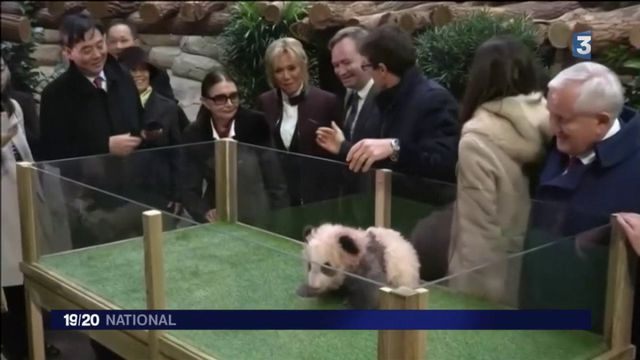 Brigitte Macron : la diplomatie du panda