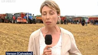Depuis Verson (Calvados), Aurélie Misery revient pour France 3 sur le blocage des éleveurs. (CAPTURE D'ÉCRAN FRANCE 3)