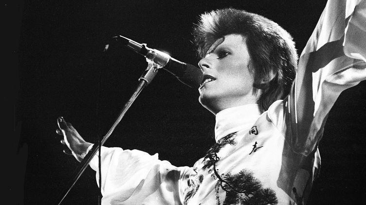 David Bowie sur scène au Earl's Court Arena à Londres en mai 1973.  (Gijsbert Hanekroot / Getty Images)