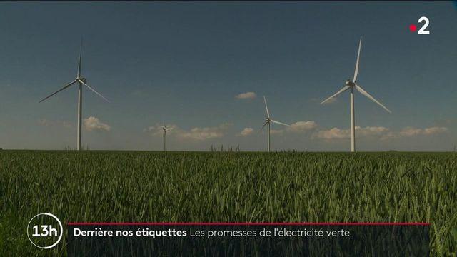 Énergie : que vaut vraiment l'électricité verte ?