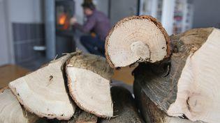 Un poêleà bois (un insert) destiné au chauffage principal dans un appartement. (Illustration) (JEAN-MARC LOOS / MAXPPP)