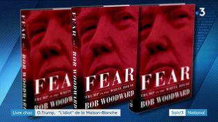 Le livre de Bob Woodward sur Donald Trump (France 3)