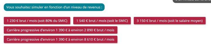 Les cinq exemples de revenus proposés par le simulateur pour un salarié du régime général. (INFO RETRAITE)