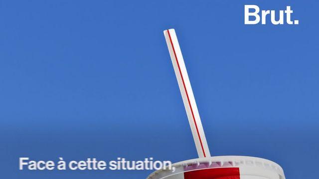 La paille en plastique… un objet tout petit qui a des conséquences terribles sur l'environnement. Voici quelques solutions pour les limiter.