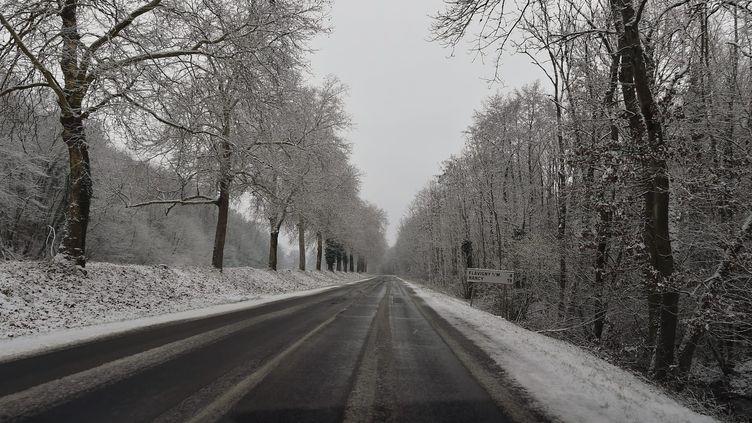Neige en Lorraine, le 21 janvier 2019. (PIERRE MATHIS / MAXPPP)